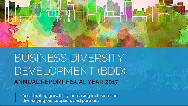 Business Diversity Development 2017 Annual Report Cover