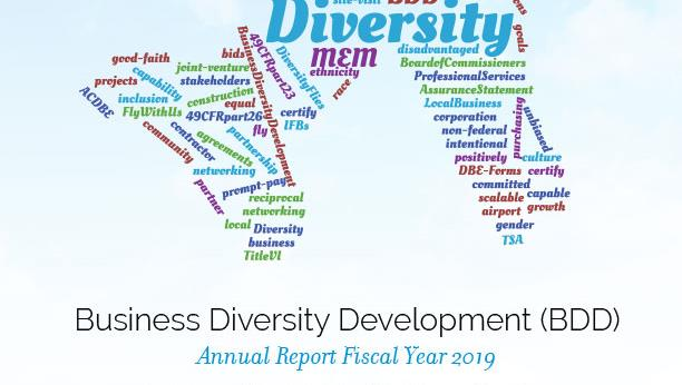Business Diversity Development Annual Report 2019 Cover